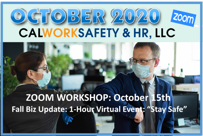 "Fall Biz Update: 1-Hour Virtual Event: ""Stay Safe"""